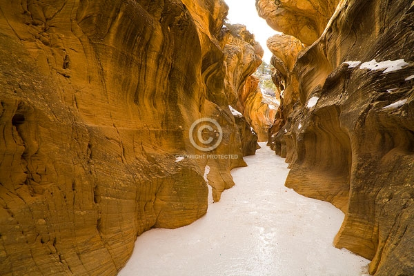 deserts, digital, esclante national monument, horizontal, ice, slot canyons, utah, willis creek narrows, winter, featured
