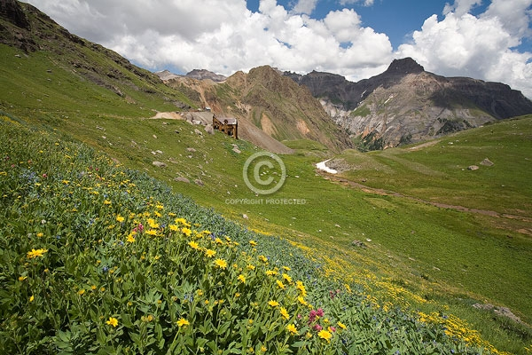 buildings, clouds, colorado, digital, flowers, governor basin, horizontal, mines, mountain top mine, peaks, rocky mountains, san juan mountains, summer, sunflowers, wildflowers, featured