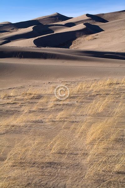 colorado, digital, great sand dunes national park & preserve, national parks, natural grass, vertical, winter, featured