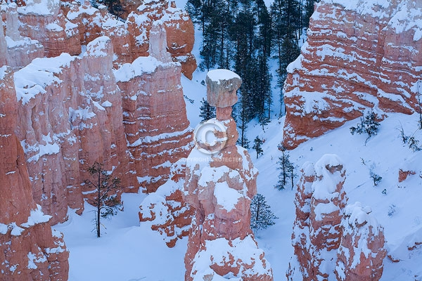 bryce canyon national park, digital, hoodoos, horizontal, national parks, snow, thor's hammer, utah, winter, featured