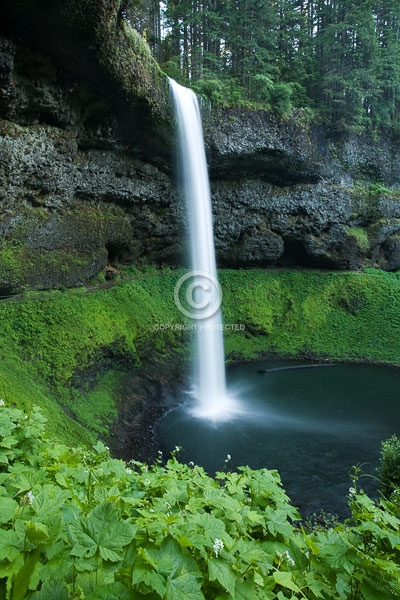 digital, oregon, pacific northwest, silver falls state park, south falls, state parks, summer, vertical, waterfalls, featured