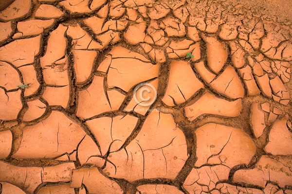arizona, cracked mud, deserts, digital, summer, water holes, waterholes slot canyon