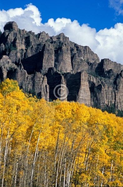 colorado, vertical, autumn, aspen trees, rock formations, fall colors, cimarron mountains, owl creek pass, clouds, featured