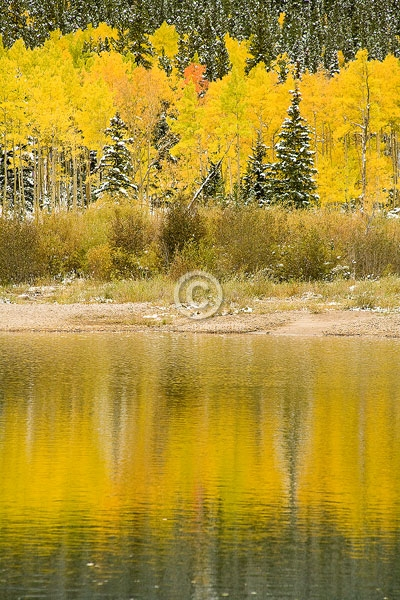 colorado, front range, guanella pass, aspen trees, autumn, digital, lakes, pine trees, ponds, reflections, vertical, featured